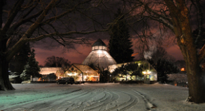 conservatory-christmas-in-snow-at-night_m